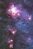 univers_300x449