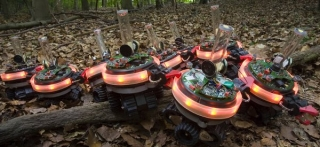 robotsswarmanoid02